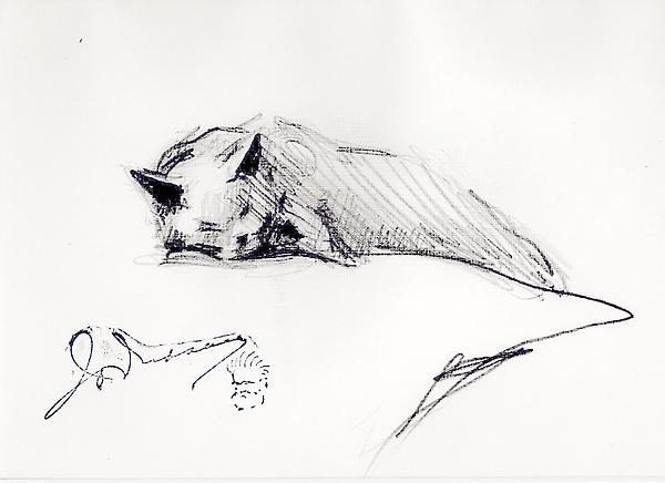 SLEEPING CAT, c. 1925 Graphite 4 7/8 x 7 5/8 inche...