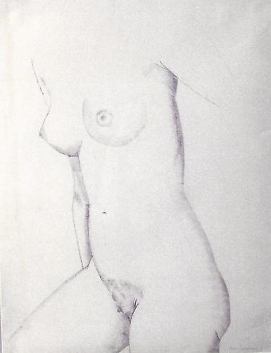 http://images.crsculpture.com/www_crsculpture_com/Laurent_FEMALE_TORSO1.jpg